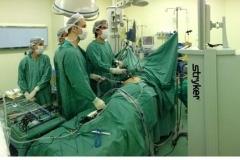 Nefrectomia Parcial Laparoscópica