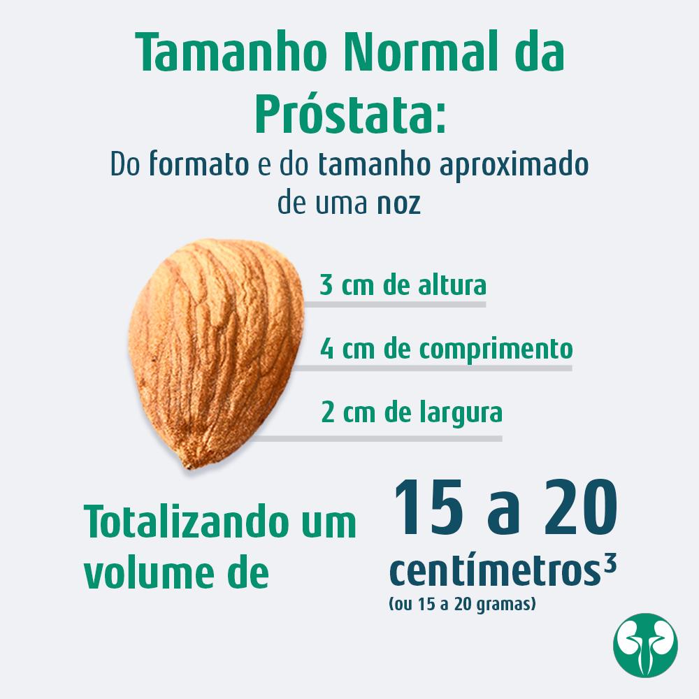 Qual o tamanho normal da próstata?